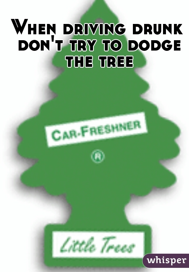 When driving drunk don't try to dodge the tree