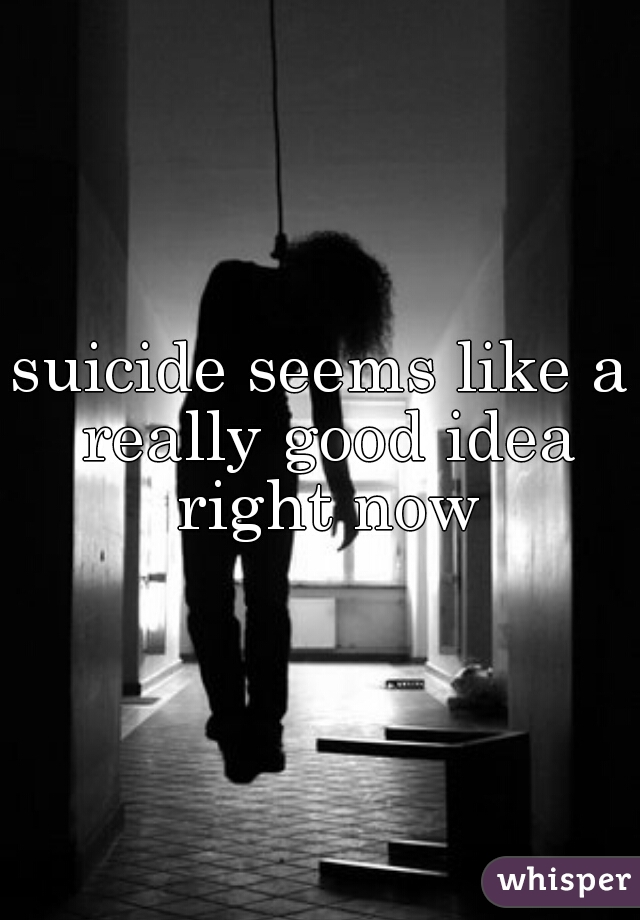 suicide seems like a really good idea right now