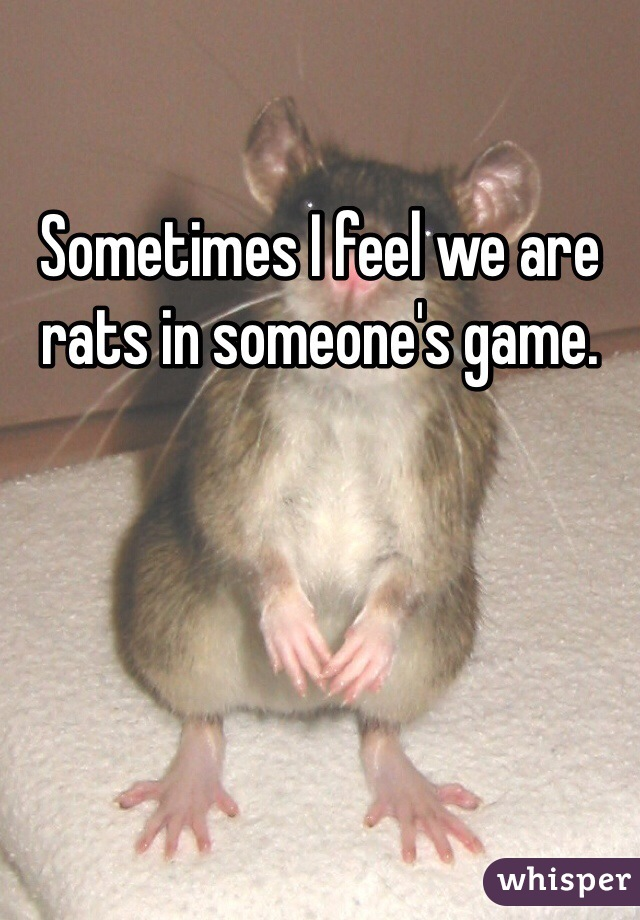 Sometimes I feel we are rats in someone's game.