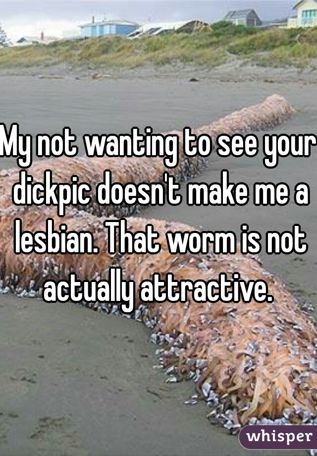 My not wanting to see your dickpic doesn't make me a lesbian. That worm is not actually attractive.