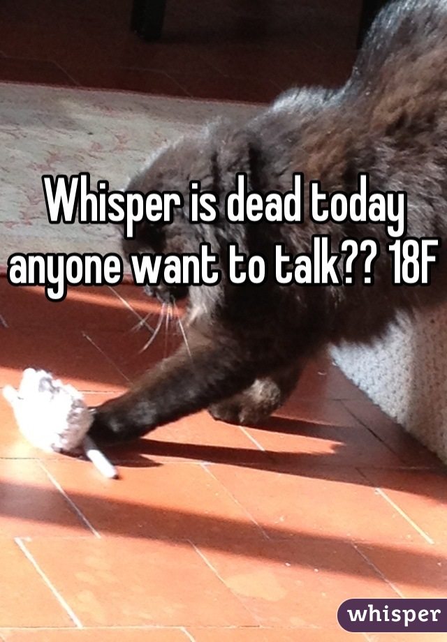 Whisper is dead today anyone want to talk?? 18F