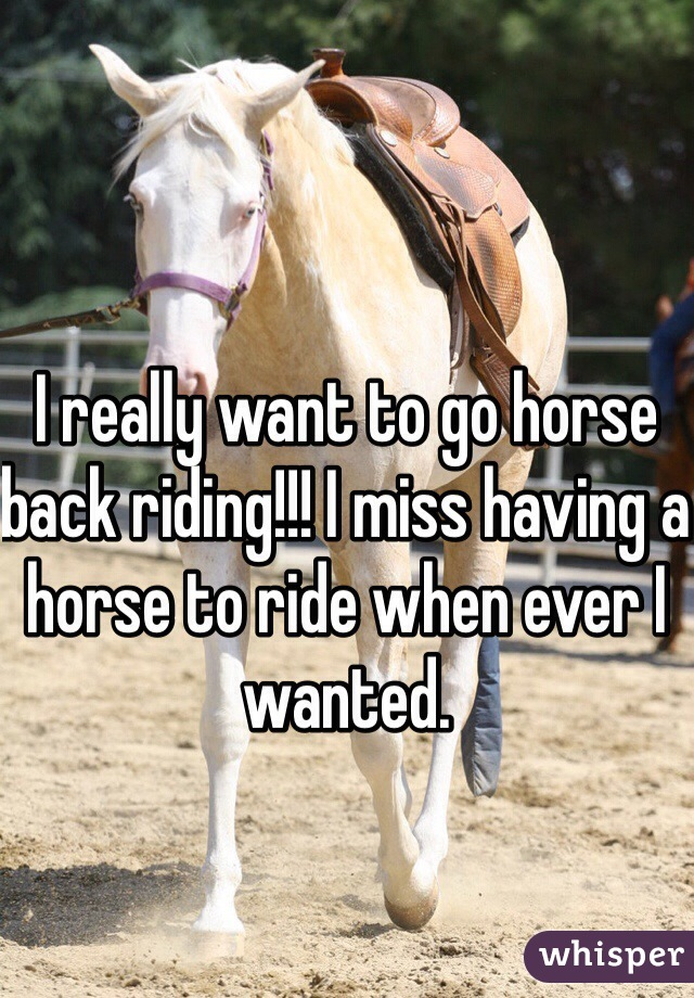 I really want to go horse back riding!!! I miss having a horse to ride when ever I wanted.