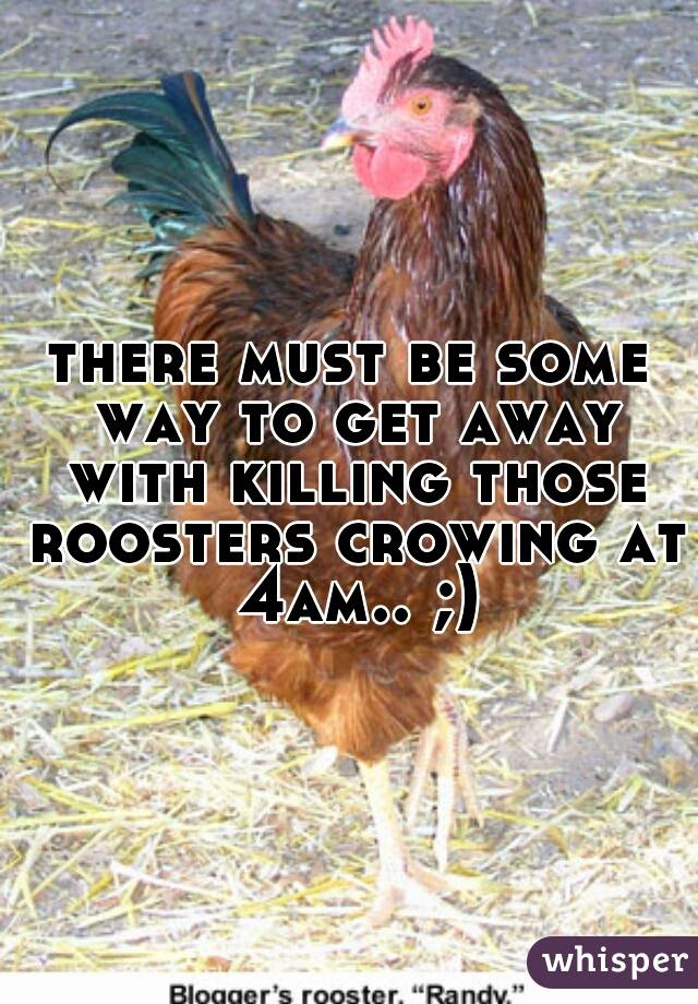 there must be some way to get away with killing those roosters crowing at 4am.. ;)