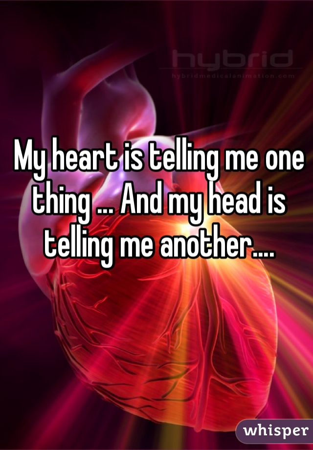 My heart is telling me one thing ... And my head is telling me another....