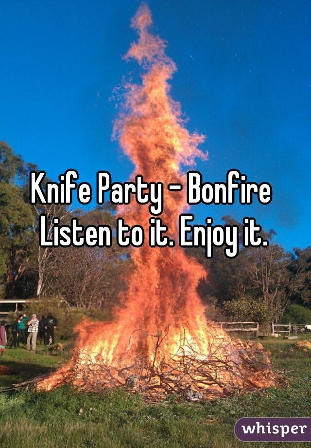Knife Party - Bonfire  Listen to it. Enjoy it.