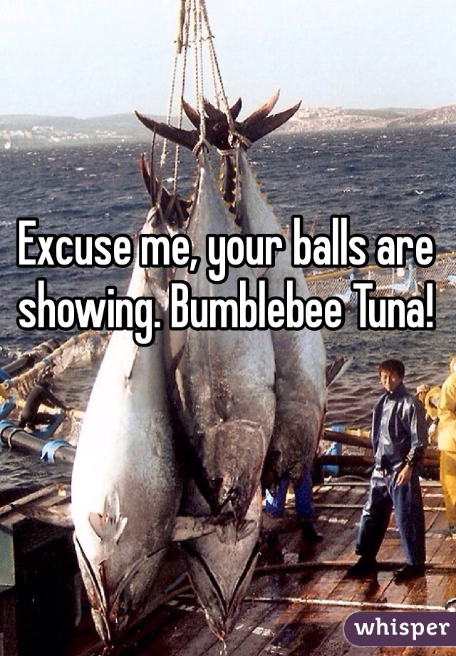 Excuse me, your balls are showing. Bumblebee Tuna!