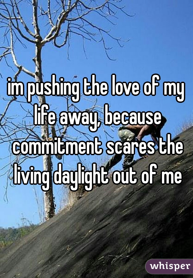 im pushing the love of my life away, because commitment scares the living daylight out of me