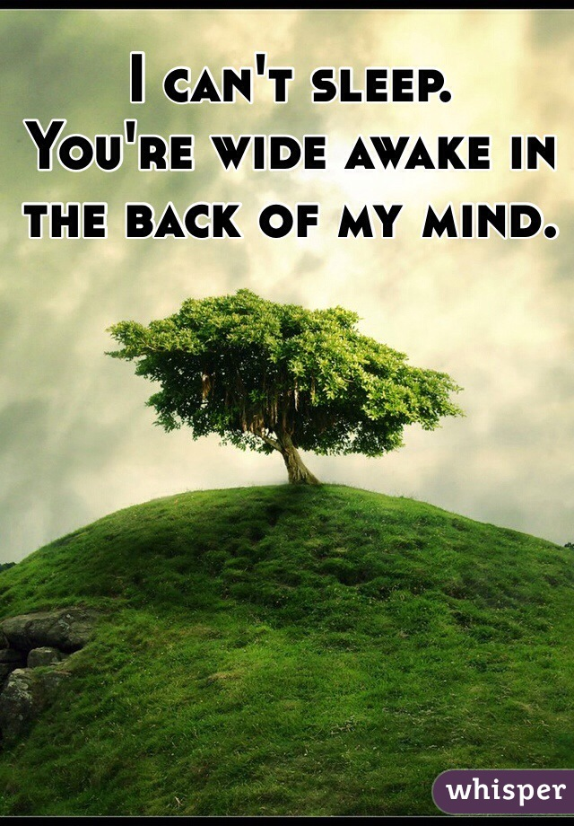I can't sleep.  You're wide awake in the back of my mind.