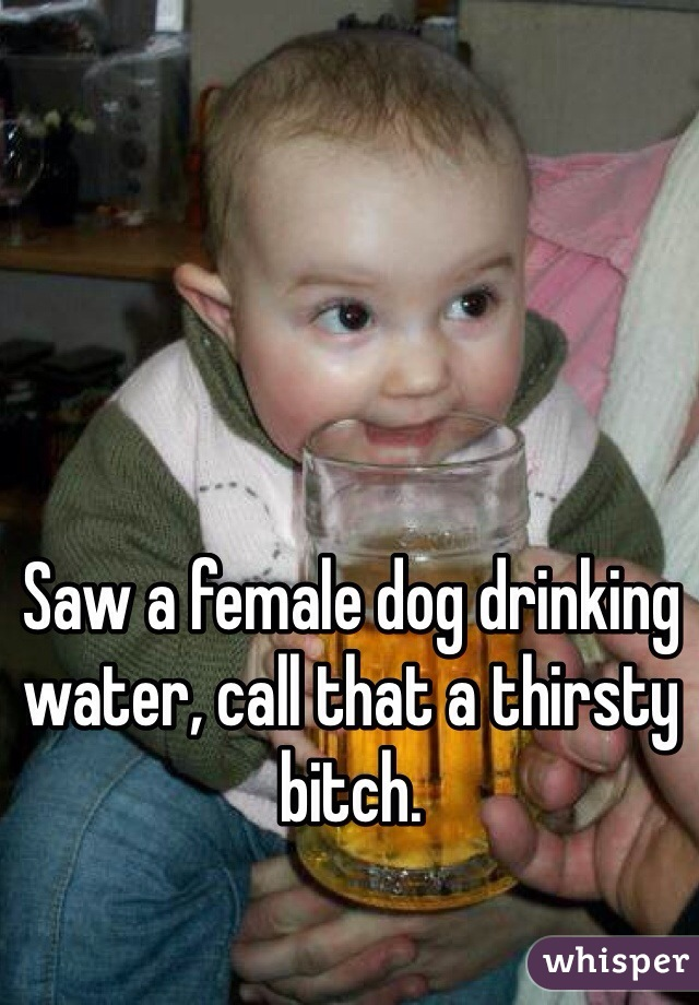 Saw a female dog drinking water, call that a thirsty bitch.