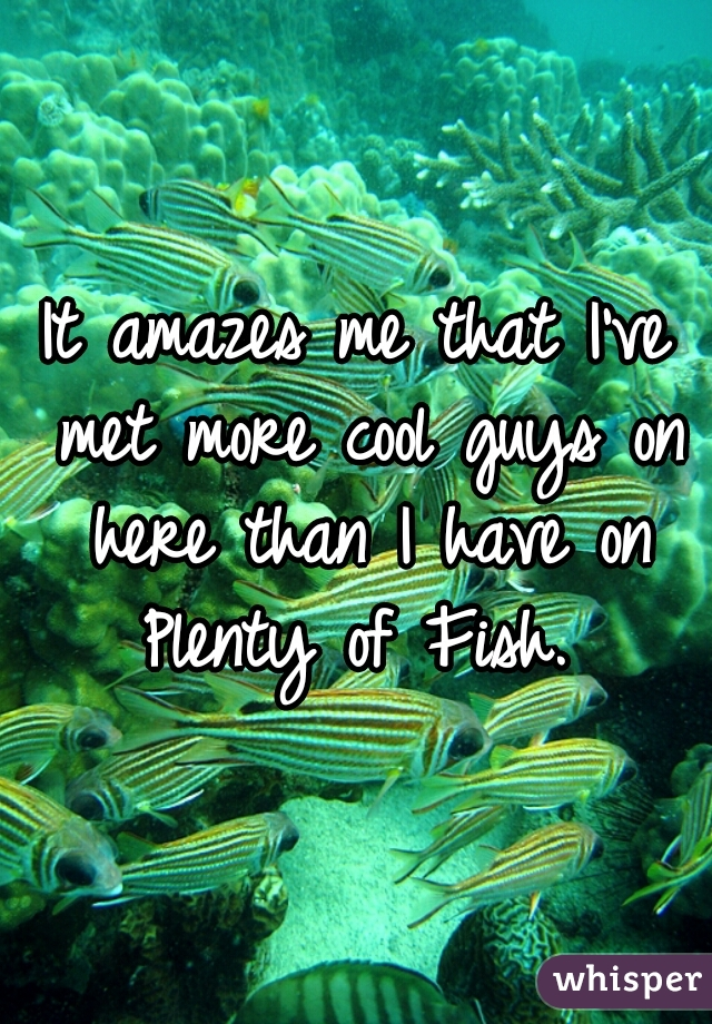 It amazes me that I've met more cool guys on here than I have on Plenty of Fish.