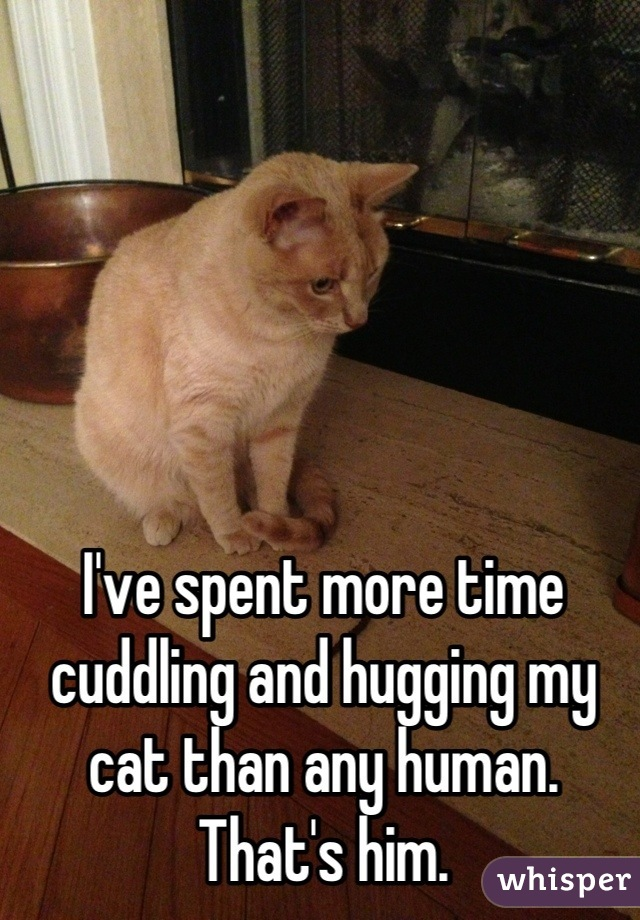 I've spent more time cuddling and hugging my cat than any human. That's him.