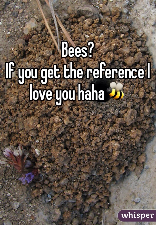 Bees? If you get the reference I love you haha🐝