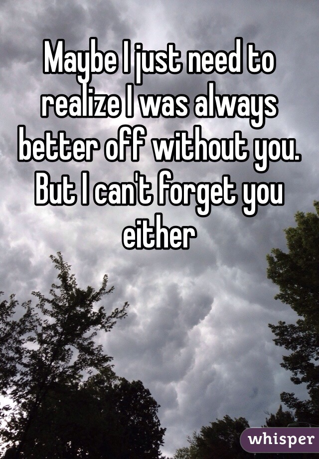 Maybe I just need to realize I was always better off without you. But I can't forget you either