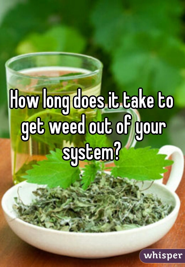 How long does it take to get weed out of your system?