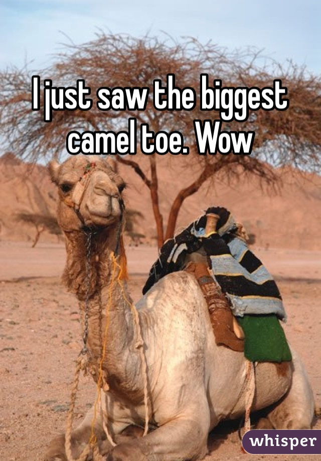 I just saw the biggest camel toe. Wow