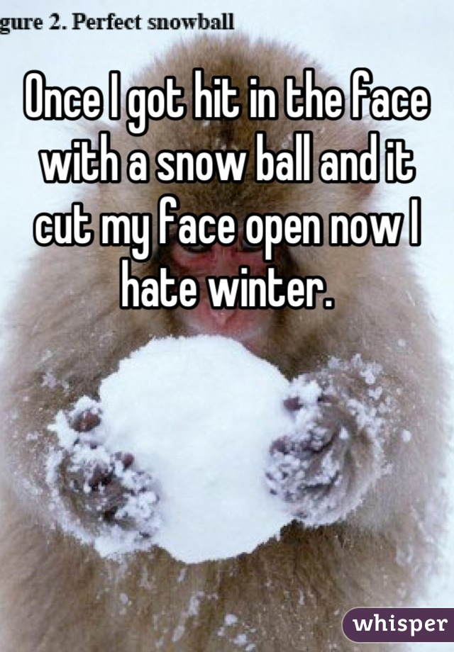 Once I got hit in the face with a snow ball and it cut my face open now I hate winter.