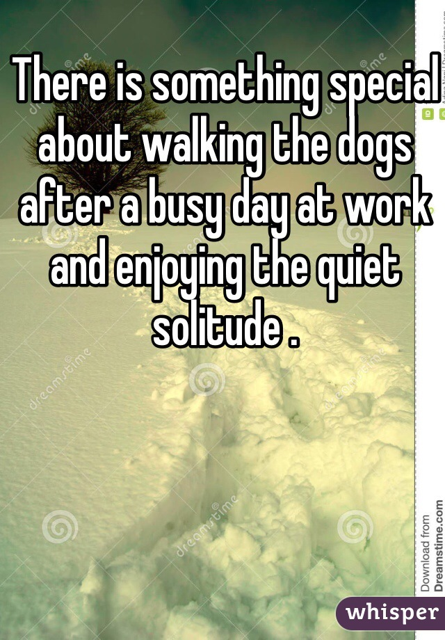 There is something special about walking the dogs after a busy day at work and enjoying the quiet solitude .