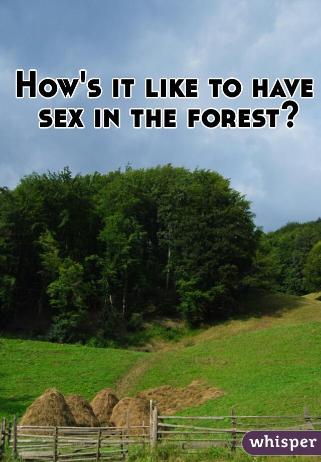 How's it like to have sex in the forest?