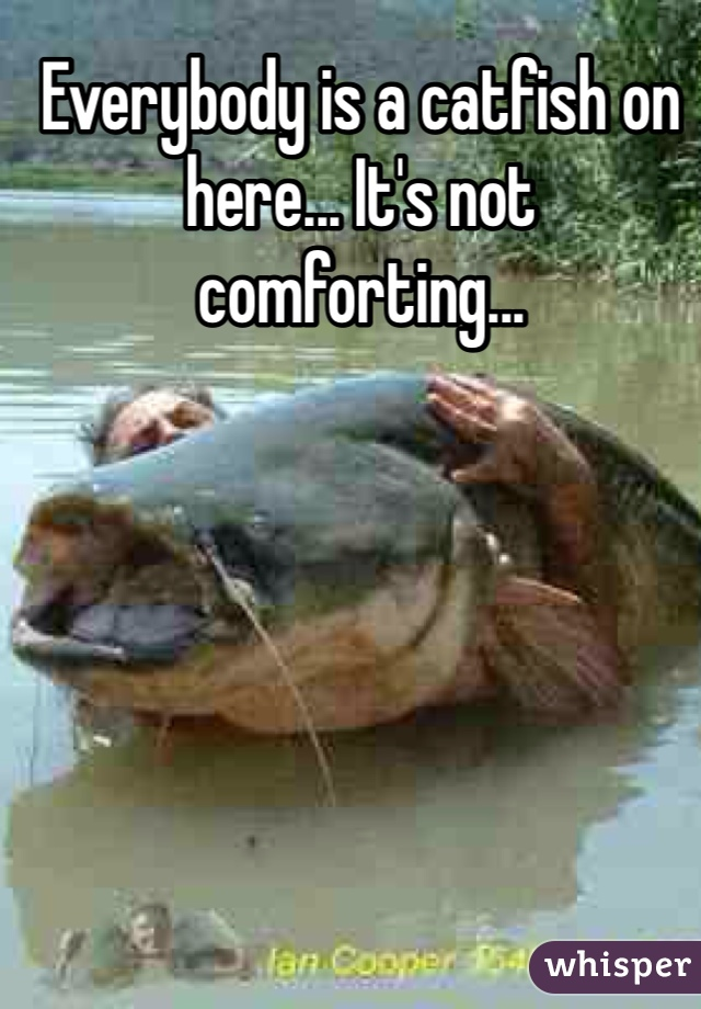 Everybody is a catfish on here... It's not comforting...