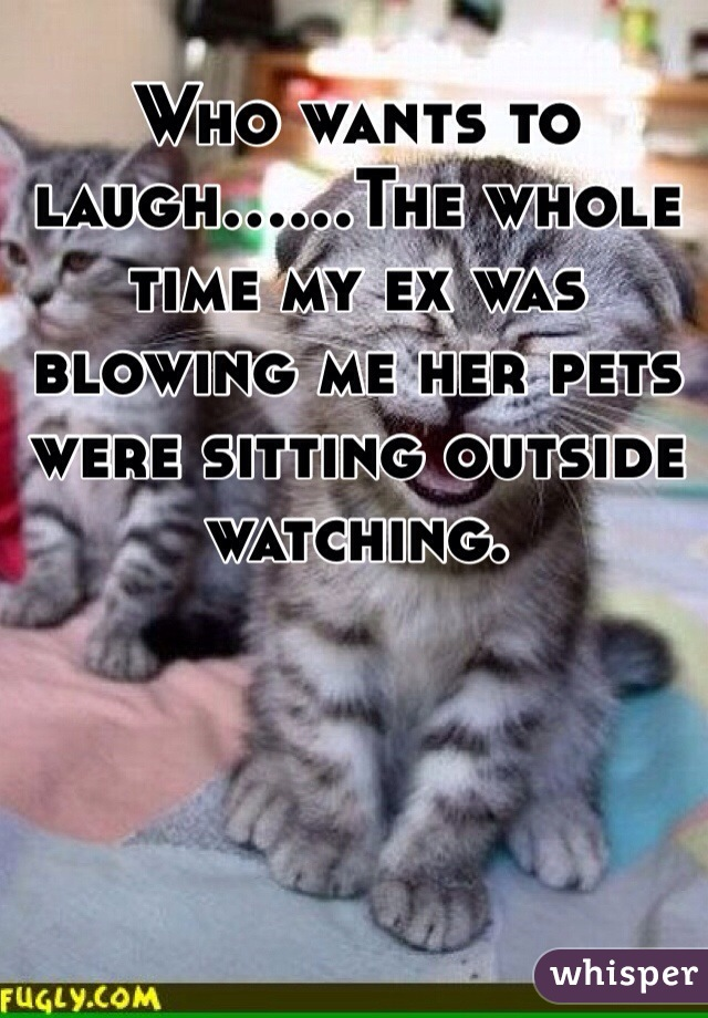 Who wants to laugh......The whole time my ex was blowing me her pets were sitting outside watching.