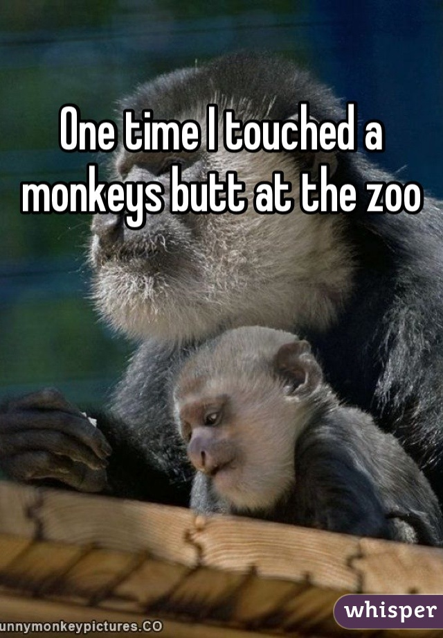 One time I touched a monkeys butt at the zoo