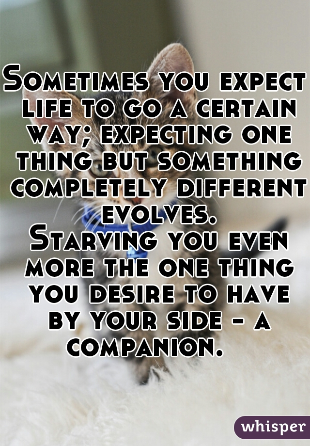 Sometimes you expect life to go a certain way; expecting one thing but something completely different evolves.    Starving you even more the one thing you desire to have by your side - a companion.