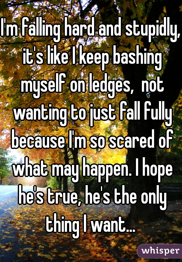 I'm falling hard and stupidly, it's like I keep bashing myself on ledges,  not wanting to just fall fully because I'm so scared of what may happen. I hope he's true, he's the only thing I want...