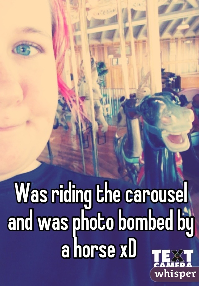 Was riding the carousel and was photo bombed by a horse xD