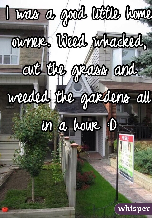 I was a good little home owner. Weed whacked, cut the grass and weeded the gardens all in a hour :D