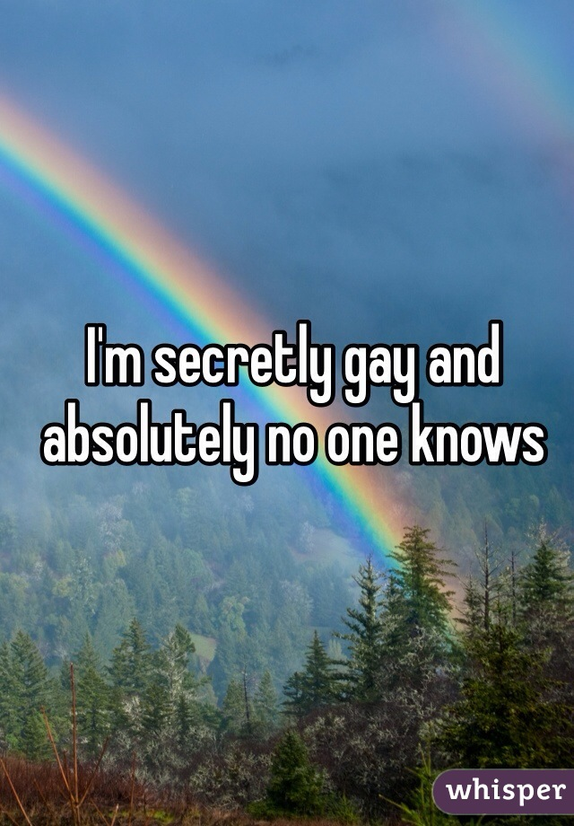 I'm secretly gay and absolutely no one knows