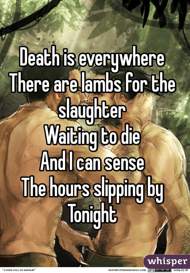 Death is everywhere There are lambs for the slaughter Waiting to die And I can sense The hours slipping by Tonight