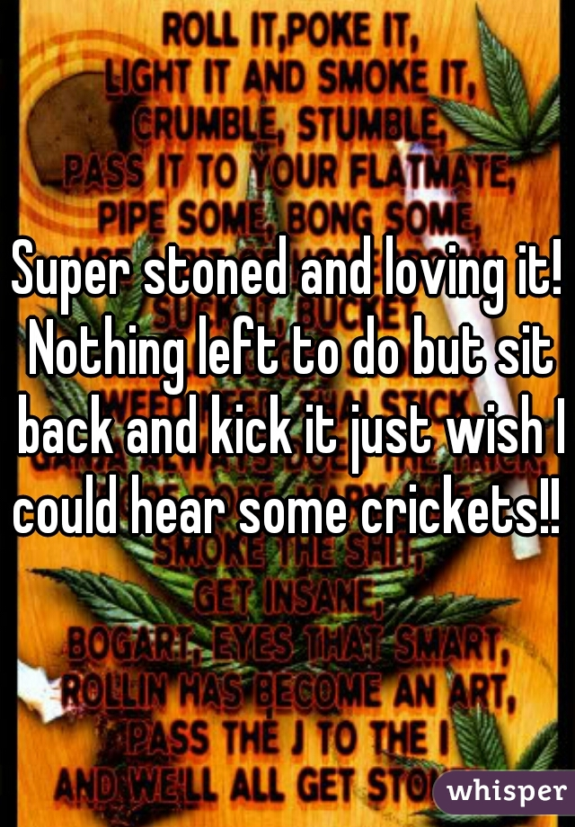 Super stoned and loving it! Nothing left to do but sit back and kick it just wish I could hear some crickets!!