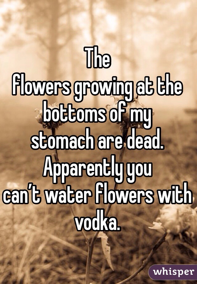The flowers growing at the bottoms of my  stomach are dead. Apparently you  can't water flowers with vodka.