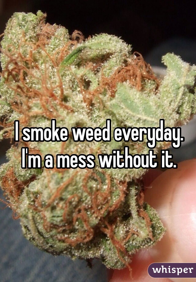 I smoke weed everyday. I'm a mess without it.