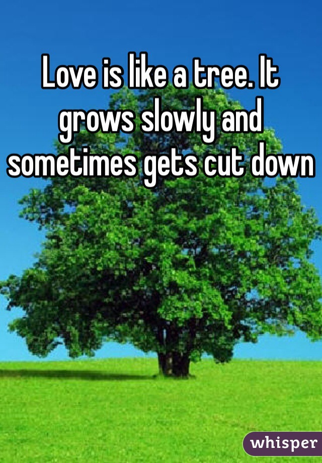 Love is like a tree. It grows slowly and sometimes gets cut down