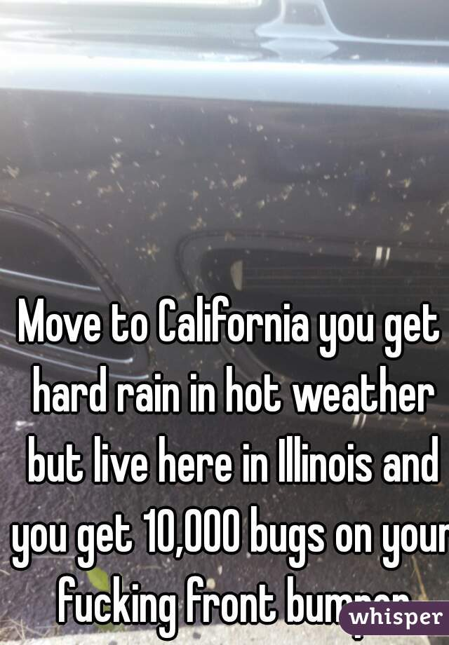Move to California you get hard rain in hot weather but live here in Illinois and you get 10,000 bugs on your fucking front bumper