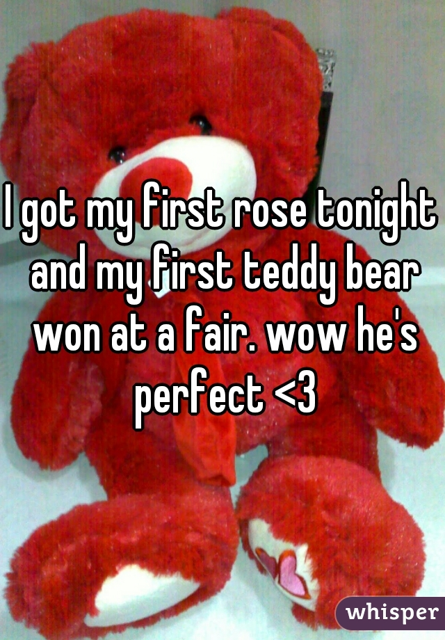I got my first rose tonight and my first teddy bear won at a fair. wow he's perfect <3
