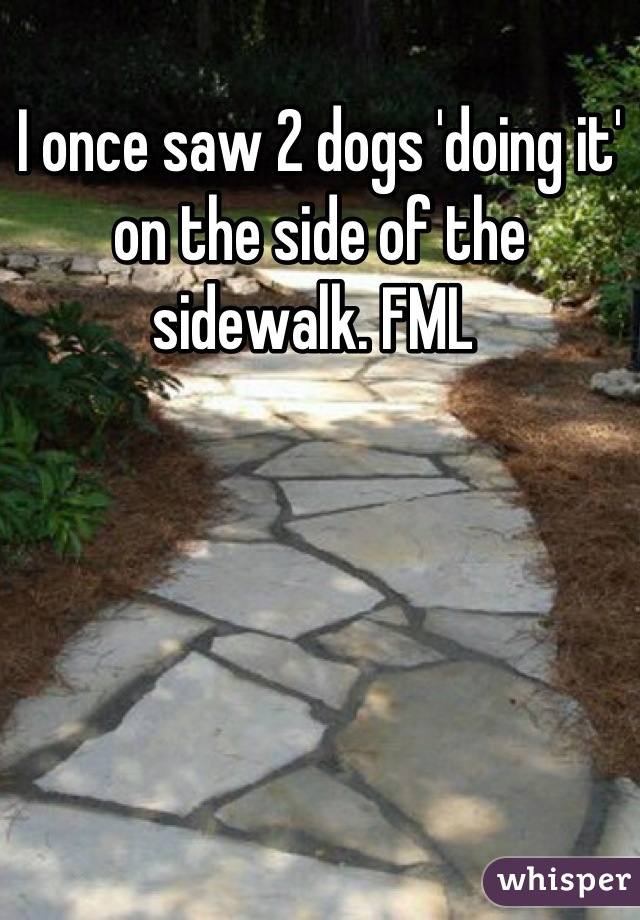 I once saw 2 dogs 'doing it' on the side of the sidewalk. FML