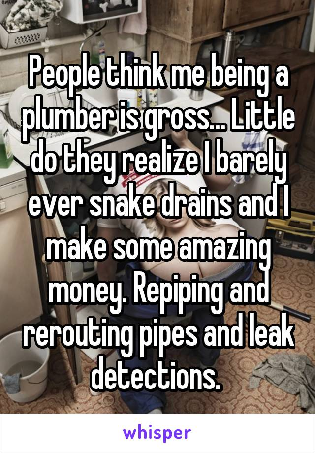 People think me being a plumber is gross... Little do they realize I barely ever snake drains and I make some amazing money. Repiping and rerouting pipes and leak detections.