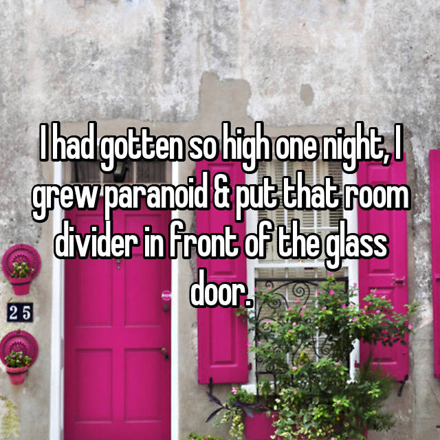I had gotten so high one night, I grew paranoid & put that room divider in front of the glass door.