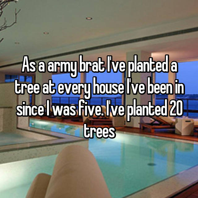 As a army brat I've planted a tree at every house I've been in since I was five. I've planted 20 trees