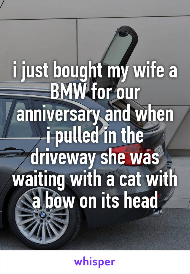 i just bought my wife a BMW for our anniversary and when i pulled in the driveway she was waiting with a cat with a bow on its head