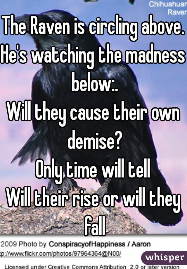 The Raven is circling above.  He's watching the madness below:. Will they cause their own demise? Only time will tell Will their rise or will they fall