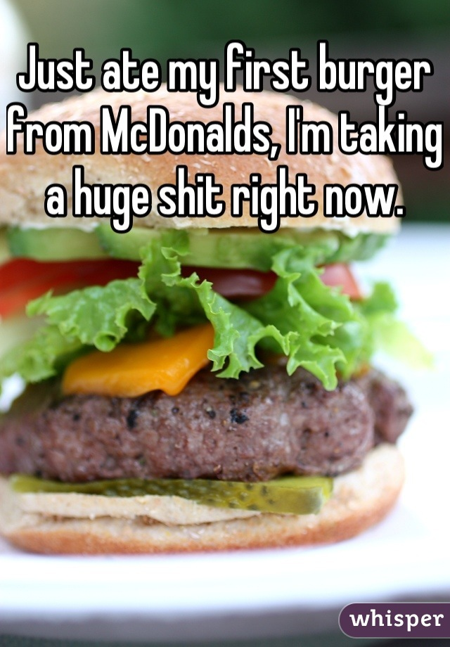 Just ate my first burger from McDonalds, I'm taking a huge shit right now.