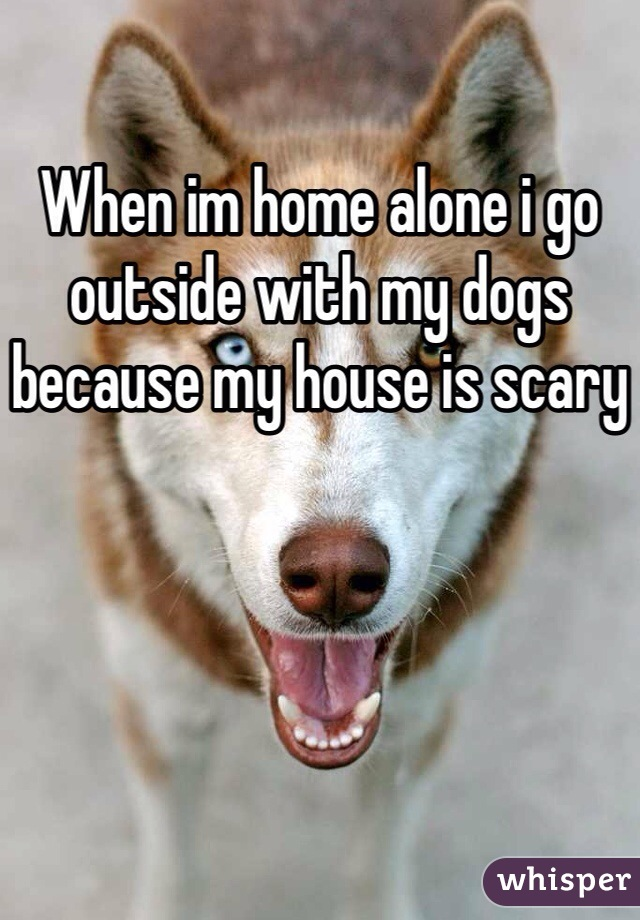 When im home alone i go outside with my dogs because my house is scary
