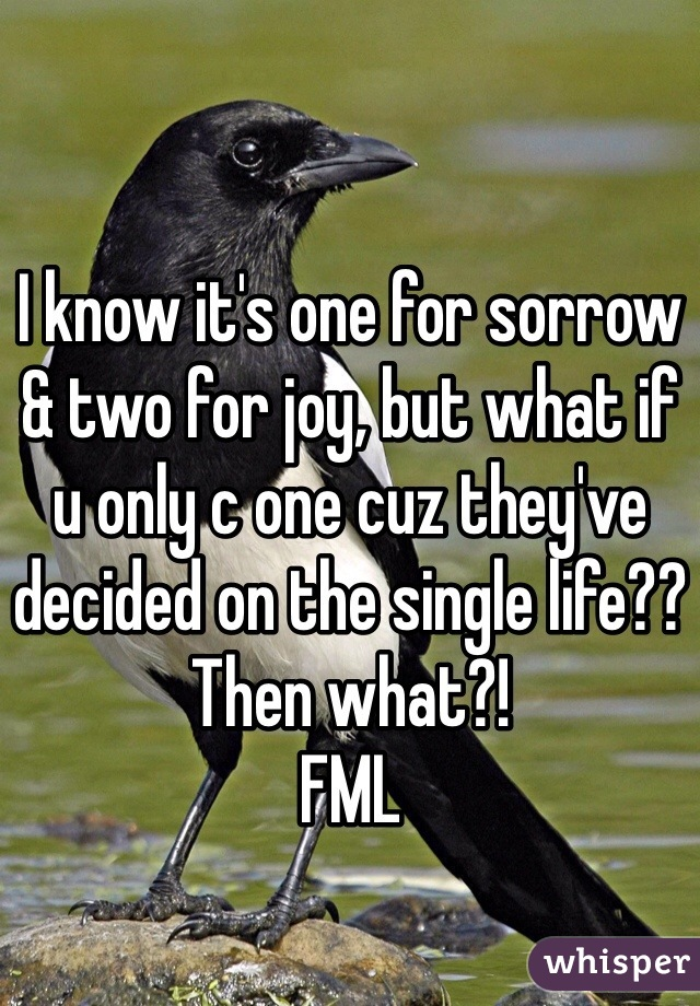I know it's one for sorrow & two for joy, but what if u only c one cuz they've decided on the single life?? Then what?!  FML