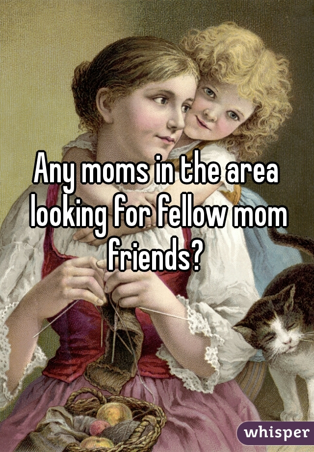 Any moms in the area looking for fellow mom friends?