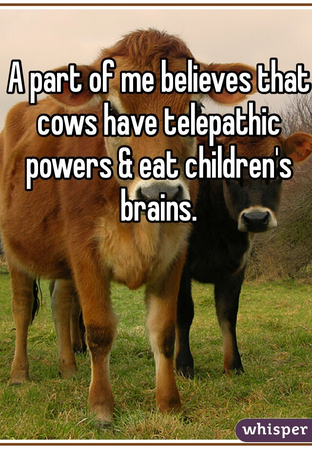 A part of me believes that cows have telepathic powers & eat children's brains.
