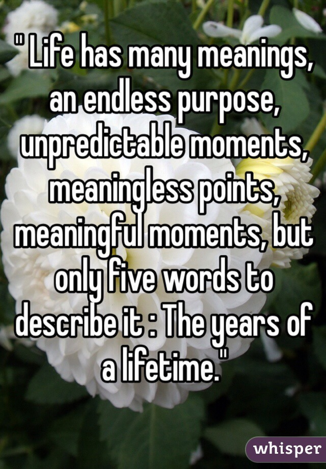 """ Life has many meanings, an endless purpose, unpredictable moments, meaningless points, meaningful moments, but only five words to describe it : The years of a lifetime."""