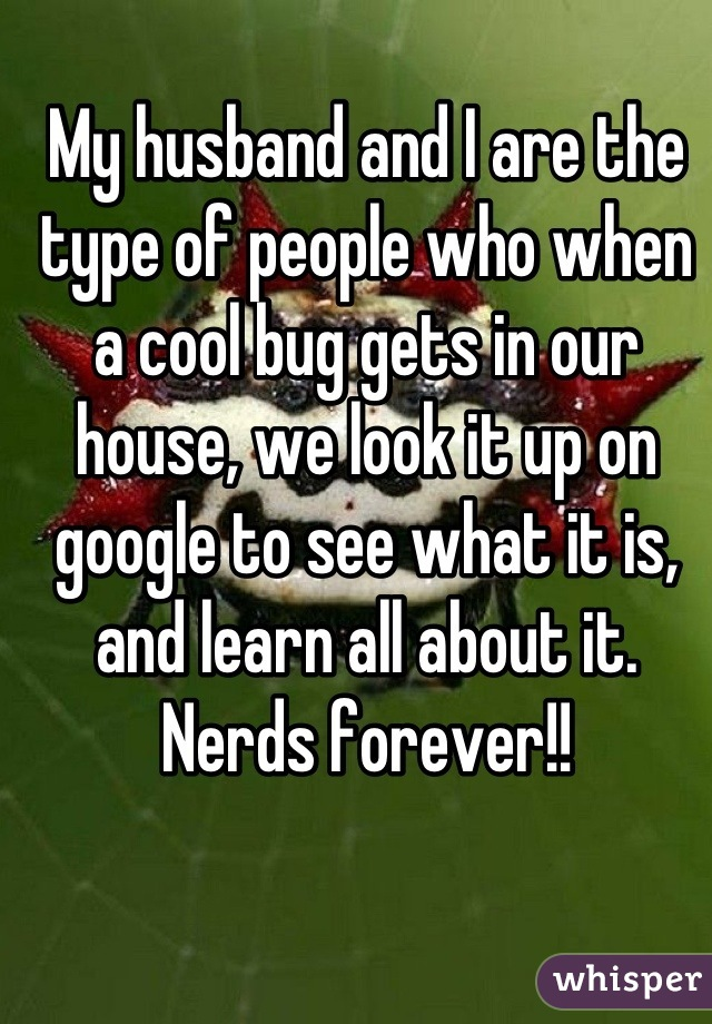 My husband and I are the type of people who when a cool bug gets in our house, we look it up on google to see what it is, and learn all about it. Nerds forever!!